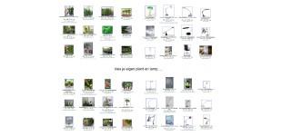 Kies je eigen identiteit = Plant en Bureaulamp